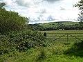 Fields above Cefn-grugos fach - geograph.org.uk - 1458354.jpg
