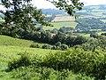 Fields near Cadeleigh - geograph.org.uk - 990512.jpg
