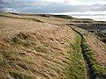 Fife Coast Path, Shell Bay - geograph.org.uk - 1537946.jpg