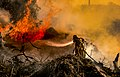 Firefighter fighting fire 01.jpg