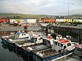 Fishing boats tied up to the pier at Portmagee - geograph.org.uk - 388796.jpg