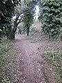 Fleam dyke path northwest of A11 crossing, Cambridgeshire. - panoramio.jpg