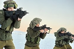 Flickr - Israel Defense Forces - Golani Brigade Conducts Exercise in Mount Hermon Snow (7).jpg