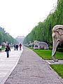 Flickr - archer10 (Dennis) - China-6512.jpg