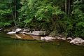 Flickr - ggallice - Cranberry River.jpg