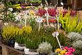 Flowers for sale at Trödelmarkt Flea Market Berlin Germany 15349958616.jpg