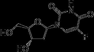 Pyrimidine analogue - Image: Floxuridine