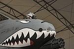 Flying Tigers helmet 161229-F-NI493-052.jpg