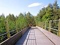 Footbridge on the Trans Pennine Trail over the River Dearne. - geograph.org.uk - 557358.jpg