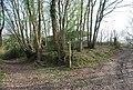 Footpath - bridleway junction - geograph.org.uk - 1253464.jpg