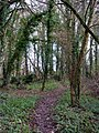Footpath between pub and church - geograph.org.uk - 1600539.jpg