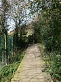 Footpath from Ruabon to Tatham - geograph.org.uk - 730284.jpg
