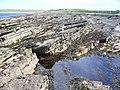 Foreshore at Tang Head - geograph.org.uk - 486845.jpg