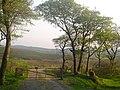 Forestry gate at Altarichard - geograph.org.uk - 418284.jpg