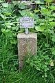 Forgotten in the corner - geograph.org.uk - 1304429.jpg