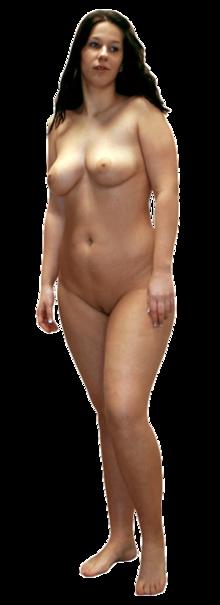 Corpo nudo femminile adulto