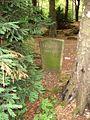Frauensteine Duesseldorf 2.jpg