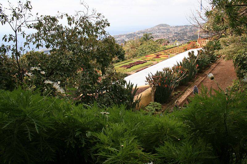Image:Funchal - Blick vom Botanischen Garten auf die Stadt IMG 1756.JPG