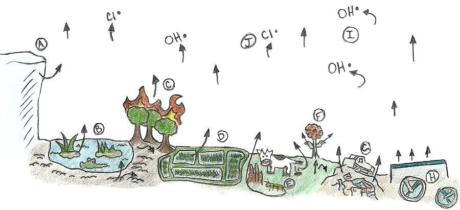Global Methane Cycle. A diagram of the Global Methane Cycle.