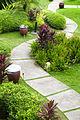 Garden Design Dublin.jpg