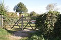 Gate to the allotments off Trent Lane - geograph.org.uk - 1520648.jpg