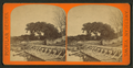General view, Mandarin, Florida, from Robert N. Dennis collection of stereoscopic views.png