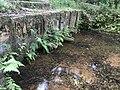 Giếng cổ Ba Vòi - Quảng Trị.jpg