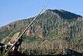 Gifford Pinchot National Forest, Mt St Helens NVM-8 (36338779134).jpg