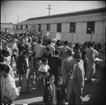 Gila River Relocation Center, Rivers, Arizona. A partial view of the large crowd in attendance at t . . . - NARA - 538660.tif