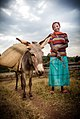 Girl with donkey transporting coffee, near Hawassa.jpg