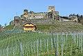 Glanegg Mautbruecken 1 Burgruine Glanegg SO-Ansicht 15042013 0345.jpg