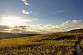 Gran Sabana paisaje 1.jpg