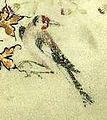 Grandes Heures du duc de Berry (BNF latin919) fol. 24r Oiseau-4.jpg
