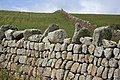 Granite Stone Walls - geograph.org.uk - 808361.jpg