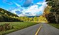 Great Smoky Mountains National Park (d7abec0d-3908-4c41-b5f3-59004ff69315).jpg
