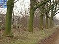 Green - panoramio - Hänsel und Gretel.jpg