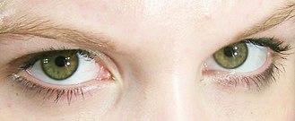 Oculesics - Green eyes