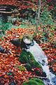 Grubenwasser Lydia-Stollen.jpg