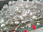 Guba mass grave 5.jpg