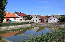 Hříšice, common pond.jpg