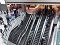 HK 中環 Central 國際金融中心商場 IFC Mall interior escalators Jan 2019 SSG 02.jpg