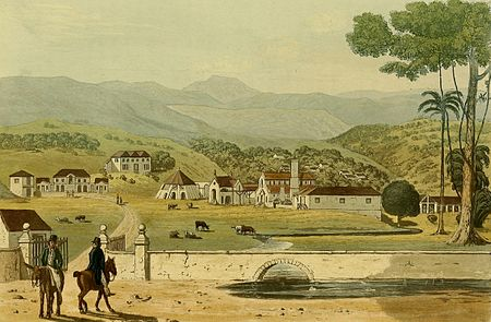 Hakewill, A Picturesque Tour of the Island of Jamaica, Plate 19.jpg