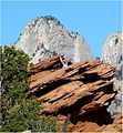Hanging Around, Zion N.P., Canyon Overlook Trail 4-30-14zbb (14098835769).jpg