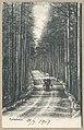 Harjutie, Harjutien korkea osa, Tarkemmin määrittelemätön paikka, 1896 PK0116.jpg