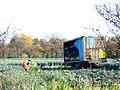 Harvesting Leeks - geograph.org.uk - 1042432.jpg