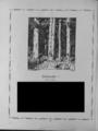 Harz-Berg-Kalender 1926 023.png