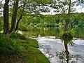 Havel - Uferpromenade (River Havel Way) - geo.hlipp.de - 36954.jpg