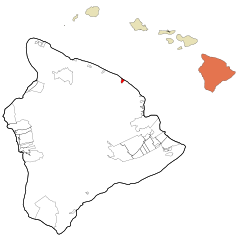 Hawaii County Hawaii Incorporated and Unincorporated areas Laupahoehoe Highlighted.svg