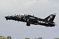 Hawk (5089820267).jpg