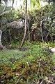 Heiau (probably Lono or Kanaloa) - panoramio.jpg